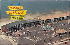 Trade Winds Motel, Panama City Beach, Florida (stevesobczuk) Tags: florida motel americana panamacitybeach miraclestrip redneckriviera vintagepostcards frontbeachrd tradewindsmotel