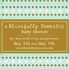blissfully domestic baby shower