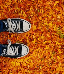 it's autumn! (.:Chelsea Dagger:.) Tags: autumn ohio portrait usa selfportrait fall leave feet me colors self photography shoes unitedstates cleveland foliage clevelandohio jeans american converse chucks narcissistic skinnyjeans chelseadagger chuchtaylor chelseakaliwhatever cmckeephotography chelseamckee