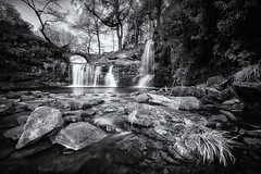 Lumb Hole Falls (Mariusz Talarek) Tags: bridge buckden crimsworthdeanbeack england falls hebden hebdenbridge hole lumb lumbhole lumbholefalls mtphotography north northyorkshire uk westyorkshire cascade countryside countrysidelandscape fall force landscape landscapephoto landscapephotographer landscapephotography longexposure nature naturelover naturephoto naturephotographer naturephotography outdoor outdoorphotographer outdoorphotography outdoors photography river stream water waterfall waterfalls