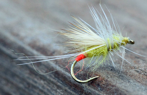 Yellow Sally Adult Fly Pattern