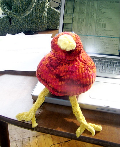 Knitted kiwi, front view.