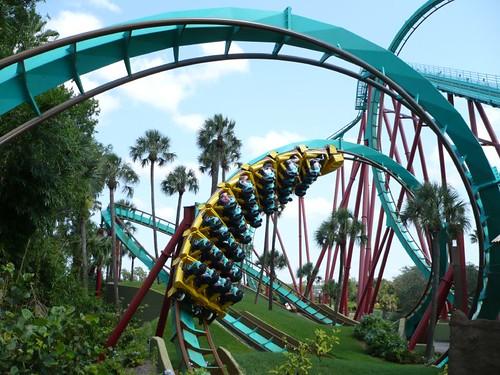 Montu at Busch Gardens, Tampa