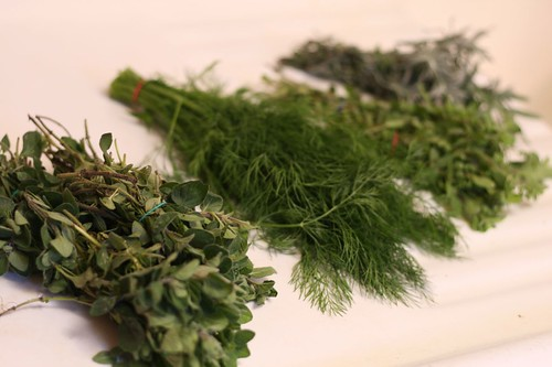 Oregano, dill, marjoram, and lavender lined up for washing