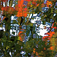 The Red Flowers In My Wild River  She Want To Hamonize My First Chakra!!! :))) (Denis Collette...!!!) Tags: red wild music canada reflection nature river rouge bravo quebec rivire reflet marais chakra musique sauvage themoulinrouge harmonize portneuf pontrouge deniscollette wildriver riviresauvage world100f firstchakra natureinred redflowers redfruits redleaves olivershanti tocarparasarakali harmoniser premierchakra natureenrouge fleursrouges fruitsrouges feuillesrouges