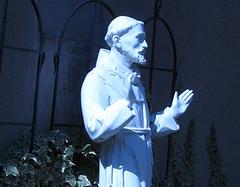 Blue St. Francis