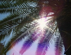 Sun is Shining...