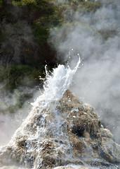 Lady Knox Starting (Singing With Light) Tags: newzealand green water soap pentax nz geyser waiotapu ladyknox jjp k200d steamjjpk200dpentax