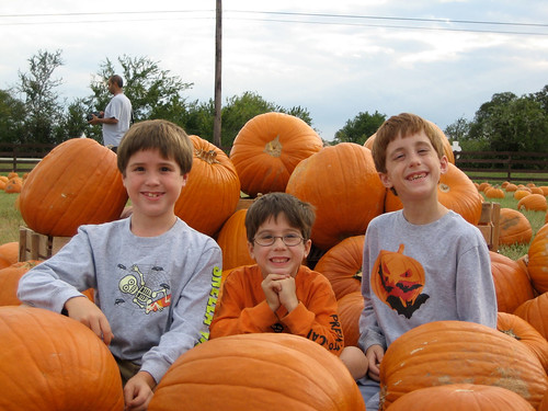 The Boys at the Pumpkin Patch
