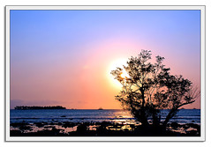 Sunblock (Yato) Tags: blue original sunset red sea sky tree indonesia landscape umang impressedbeauty yato byyatoallrightsreserved beautifulinonesia mostfavedinmyflcikr