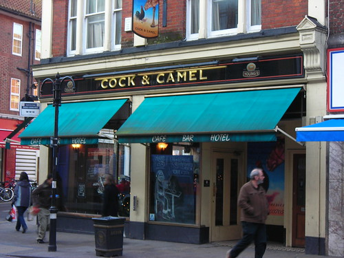 Cock and Camel