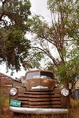 Chevrolet Truck (Curtis Gregory Perry) Tags: auto brown tree chevrolet abandoned field car plaque truck automobile colorado plate mobil plaka chevy license co motor ng nm placa targa automvil fruita xe automobil    nummernschild   samochd  tablicarejestracyjna rekisterikilpi kotse 1588  otomobil kentekenplaat    dimmatriculation nummerplade sasakyan  hi     rendszmtbla bifrei  automobili gluaisten  nmatriculare   platlesen leyfisveitandidiskur     numurazme valstybinisnumeris numbrimrk  lesenisahani