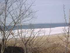 Indiana Dunes (dcheath8) Tags: statepark indiana lakemichigan indianadunes