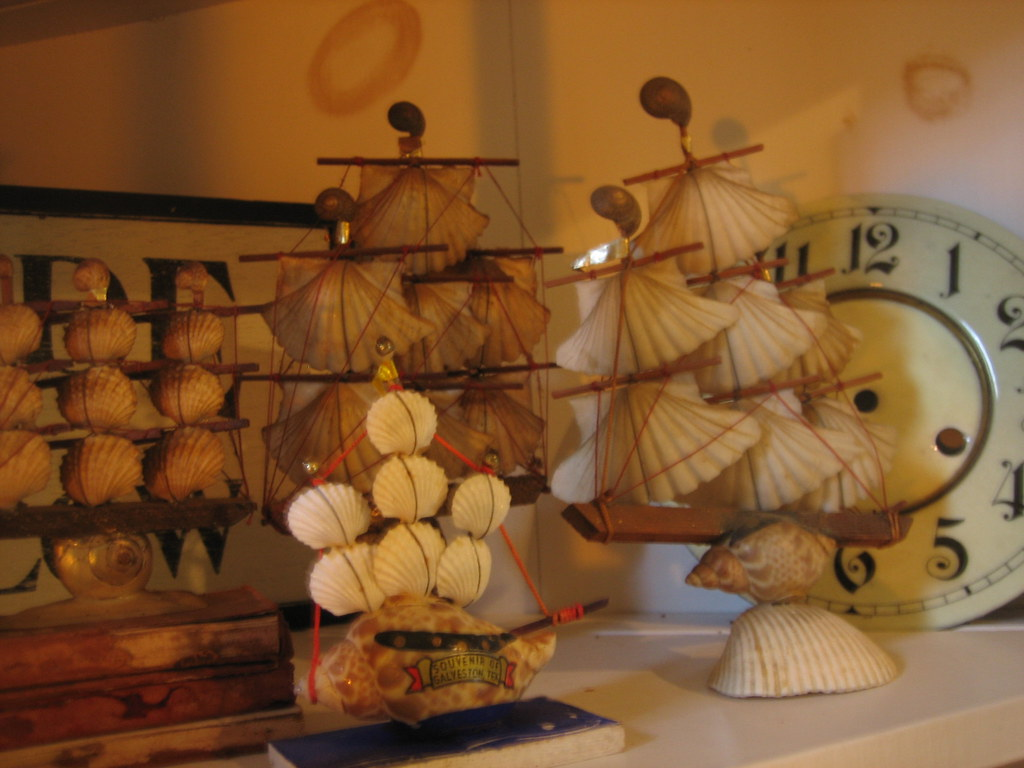 Seashell boat collection
