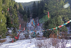 Prayer Flags in the Snow (treasuresthouhast) Tags: china tibetan  sichuan prayerflag    erdaohai