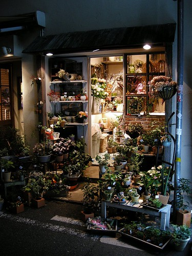 flower shop in night<br />