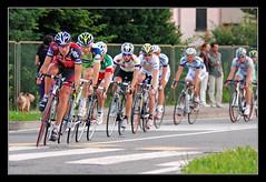 Circuito di Usmate (matt :-)) Tags: bicycle cycling luca paolo bikes racing di ciclismo mattia riccardo danilo bicycleracing circuito bicicletta gara paolobettini 80200mmf28d bettini usmate ricc nikond80 danilodiluca riccardoricc consonni circuitodiusmate mattiaconsonni