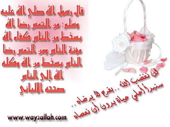 3629221236_197ee470e7_o