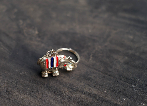 elephant (34/365 dps)