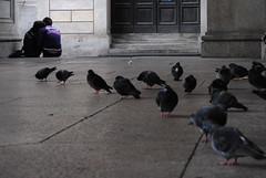 Prospettiva di un abbraccio - Prospect of a hug. (sinetempore) Tags: street boy woman man girl birds torino donna strada pair uccelli turin ragazza coppia ragazzo mygearandme prospettivadiunabbraccio prospectofahug