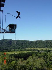 bungy4 wide
