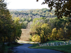 Country Road 2 (Ron Ginther) Tags: autumn trees landscape countryroad sonydsch5