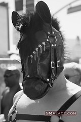 human horse (weird.witch80) Tags: sanfrancisco leather fetish folsom bondage bdsm kinky folsomstreetfair folsomstreet folsomstreetfair2007 folsom2007