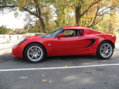 Lotus at GW scenic overlook 1