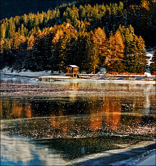House on the lake (Katarina 2353) Tags: trees winter lake snow ski mountains film ice nature water beautiful fairytale forest landscape photography switzerland nikon europe flickr frost paradise suisse image swiss dream places paisaje davos paysage priroda slope tjkp davosersee lakedavos pejza katarinastefanovic katarina2353 gettylicence