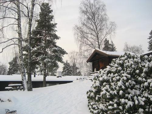 2174472269_649a396766 - Snow Photos - Anonymous Diary Blog