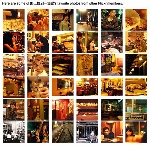 Photos marked as 路貓 favorites