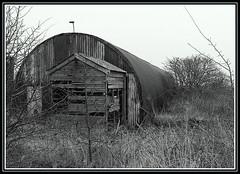 Nissen Hut, Sawcliffe. (Romeo66) Tags: uk england bw nissan lincolnshire hut scunthorpe silv nissanhut photofaceoffwinner pfosilver sawcliffe