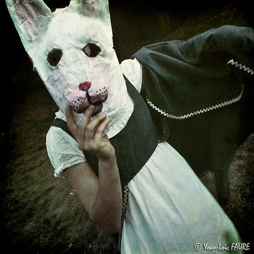 Rabbity #2