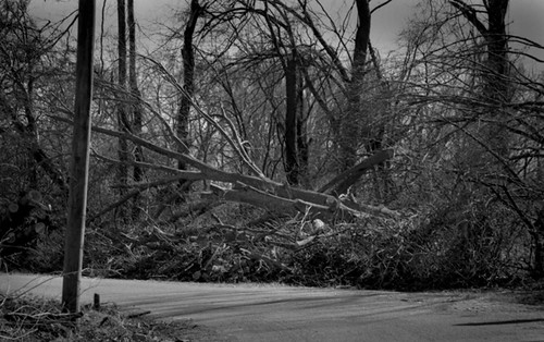 West Tennessee Tornado Damage - bw400cn
