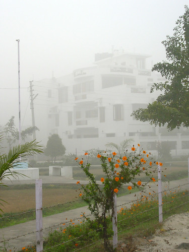 Foggy morning in Roorkee - 5