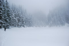 Kendall Peak Lake (Mark Griffith) Tags: trees snow fog forest washington pines snowshoeing snoqualmiepass dawnpatrol kendallpeaklakes adamkramer march2008snow kendallpeaklake mbgphotoframe