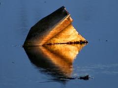 Reflection of a trash (*Jonina*) Tags: reflection trash fabulous goldenglobe excapture flickrestrellas