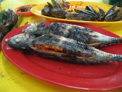 burnt fish