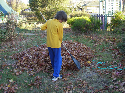 raking 3