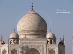 "taj • <a style=""font-size:0.8em;"" href=""http://www.flickr.com/photos/26632545@N08/2758609727/"" target=""_blank"">View on Flickr</a>"