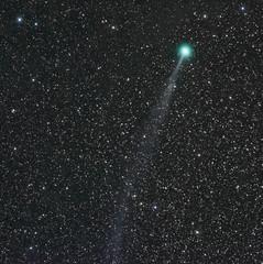 COMET Lovejoy_010815 (northern_nights) Tags: comet cometlovejoy nikond7100 nikkor85mmf14 santafe newmexico orionsiriuseqg astrometrydotnet:id=nova1956863 astrometrydotnet:status=solved