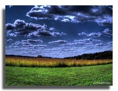 Life... As It Begins. (D2 Photography) Tags: life trees sky nature grass clouds bravo surrealism sony magicdonkey mywinners abigfave naturewatcher platinumheartaward