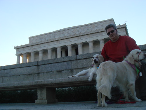 Hanging With the dogs at the Lincoln Memorial