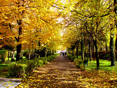 Autumn at 'Ymer Prizreni' school