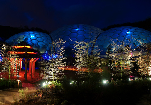 Rainforest Biodome At Night
