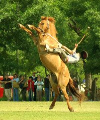 Alzando manos (Eduardo Amorim) Tags: horses horse southamerica argentina caballo cheval caballos bravo cavalos pferde cavalli cavallo cavalo gauchos pferd pampa hest hevonen chevaux gaucho  amricadosul hst gacho  campero amriquedusud provinciadebuenosaires  gachos  sudamrica sanantoniodeareco suramrica amricadelsur  areco sdamerika jineteada   pampaargentina camperos americadelsud mywinners gineteada anawesomeshot  americameridionale campeiros campeiro eduardoamorim picswithsoul mastersoflifegallery pampaargentino