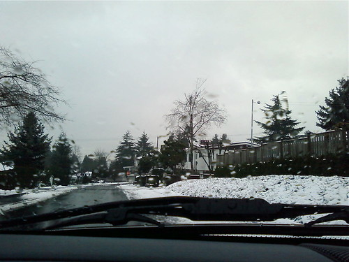 Burnaby near Metrotown - lots of snow