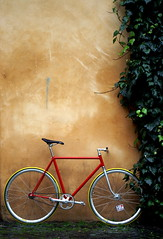 sWEeT DREAM ([Haring]) Tags: rome roma bike bici singlespeed fixie fixedgear fissa fixa questabiciromanamanonromanista