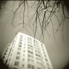 08:3 (hiscozzese) Tags: 120 arlington holga ballston virginiasquare