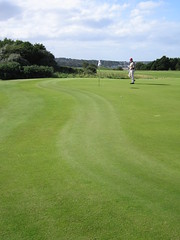 Fringe Shaping, Green No. 11, Glen Golf Course...